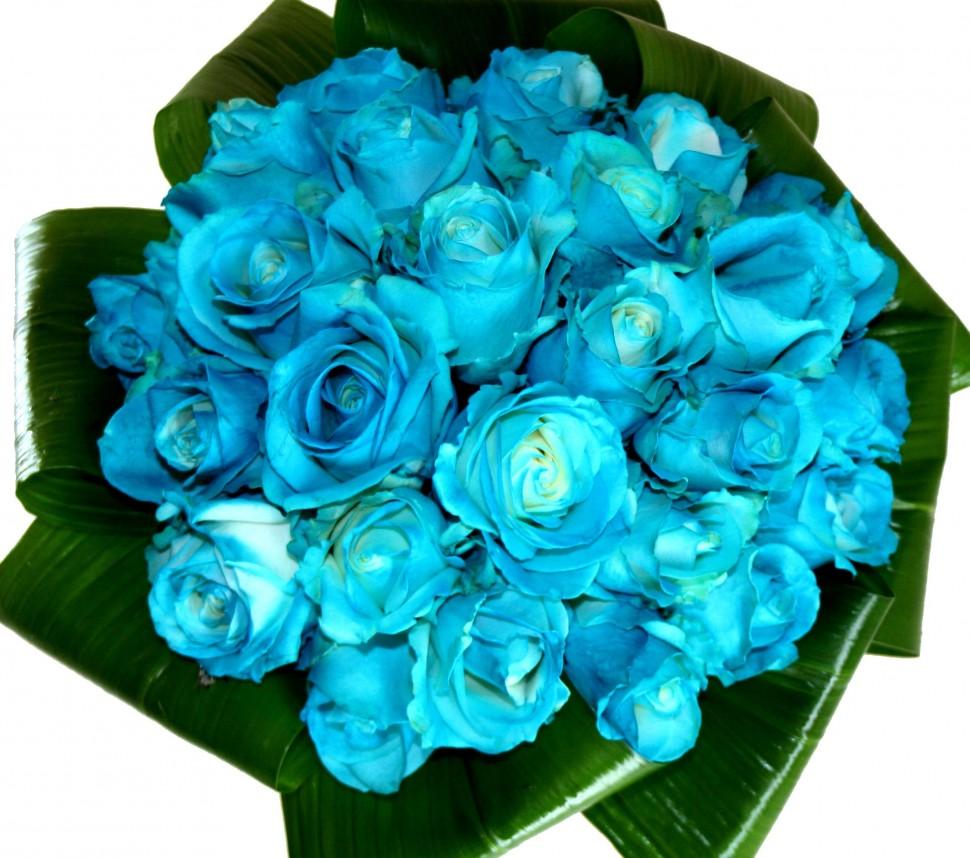 Оригами, открытки с синими розами