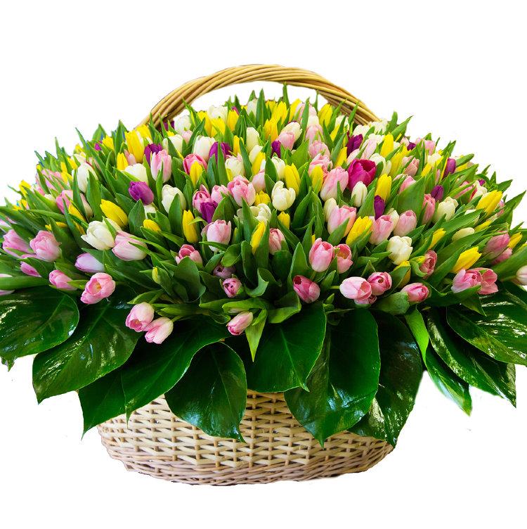 картинки цветов весенних букетов цветов