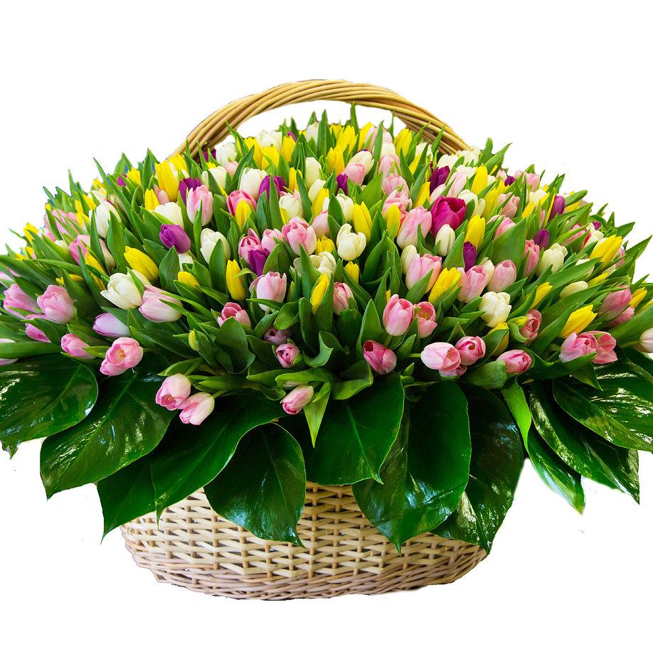 Букет конфет, цветы корзины