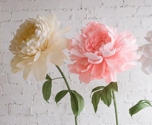 Гигантские цветы на ножке