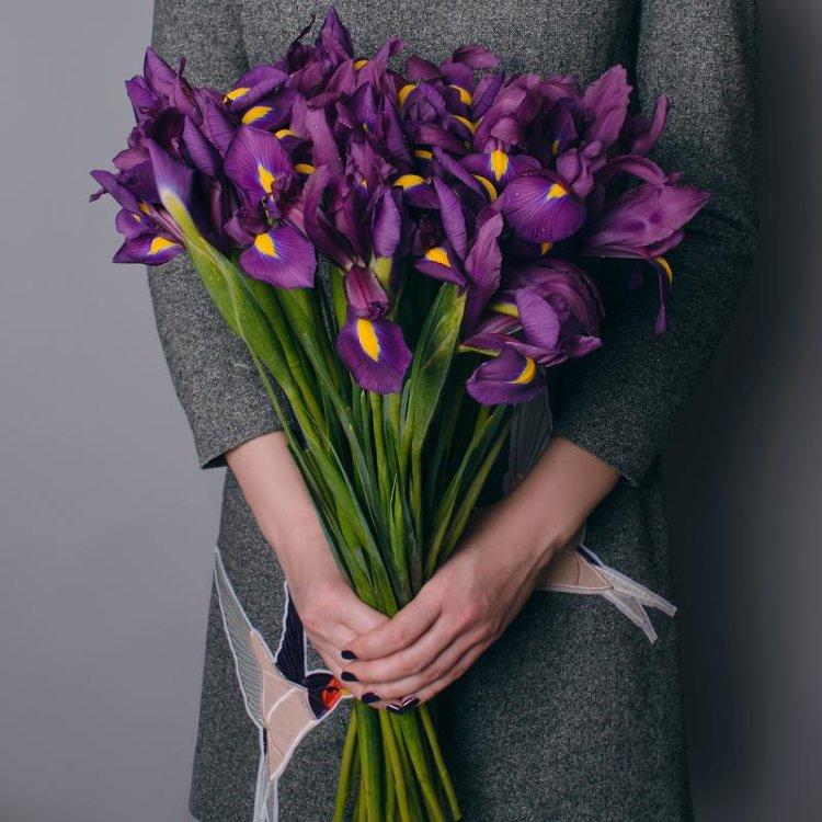 Цветы подарить, коричневые ирисы букеты