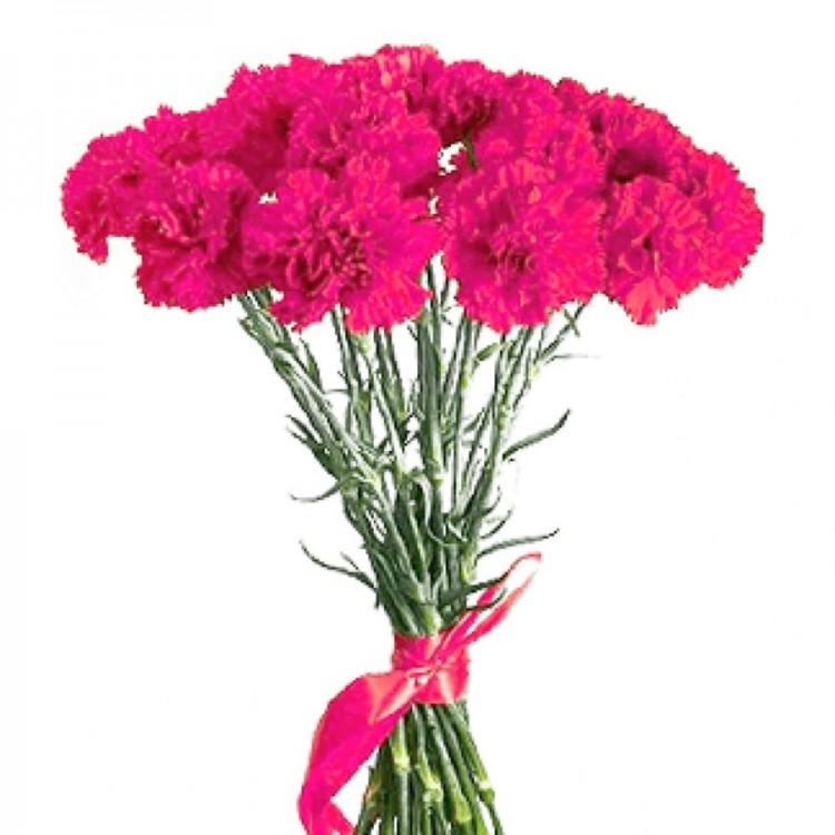 Красивые букет цветов из гвоздик фото, рязань